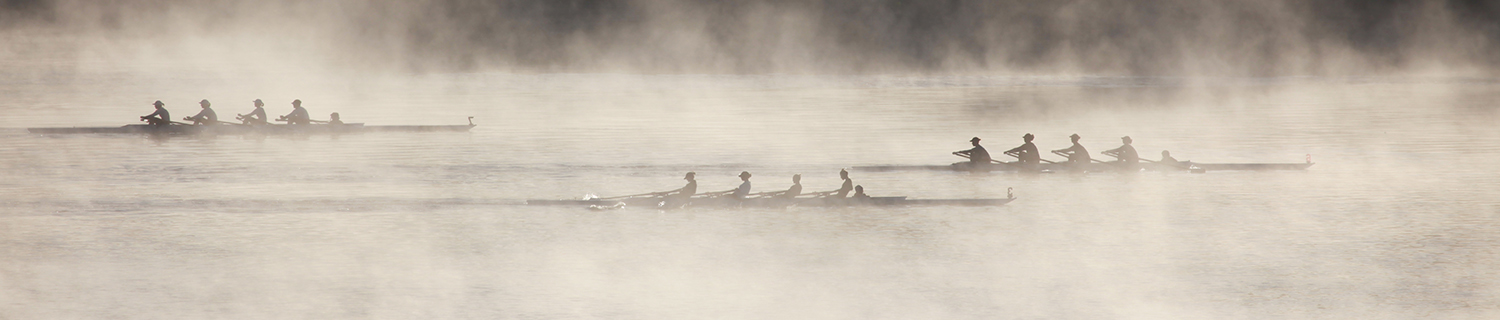 3 crews rowing on a misty lake